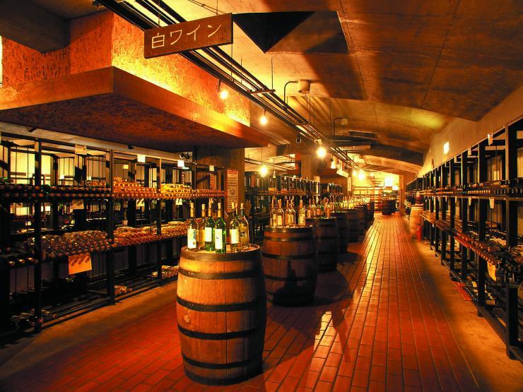 ワインの丘.jpg